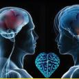 """L'evento """"IL CERVELLO NON PENSA DA SOLO, PENSA TUTTO IL CORPO L'affascinante relazione tra neurologico e psichiatrico"""", con il patronicio di AISMI, si terrà il 17 Dicembre 2016presso la Sala […]"""