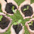 Si terrà a Bologna, il 28 e il 29 Settembre, ilmodulo di approfondimento su terapia orticolturale ed educazione inclusiva in progetti rivolti a bambini e adolescenti. Il modulo si svolgerà […]